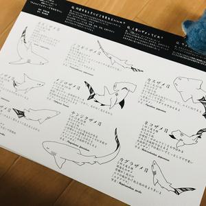 サメ分類トートバック