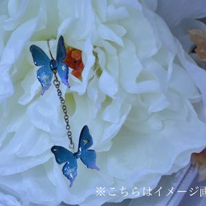 蝶のピアス(人間用)