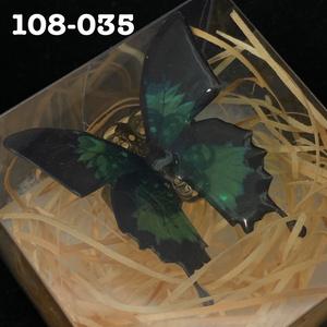 大きな蝶のリング(人間用フリーサイズ)