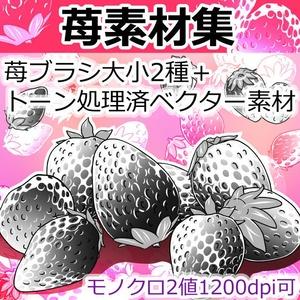 苺素材集(クリスタ/PSD/PNG)