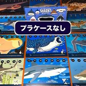 2019サメ図鑑カレンダー(エコパック)