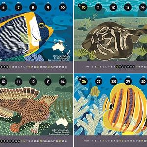 2018オーストラリア固有魚カレンダー
