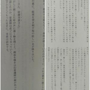 【二冊セット】シレノメリア+リバースエンド