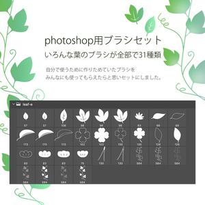 photoshop用 いろんな葉っぱのブラシ素材セット