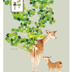 季節の絵はがきセット『高野山で暮らす』