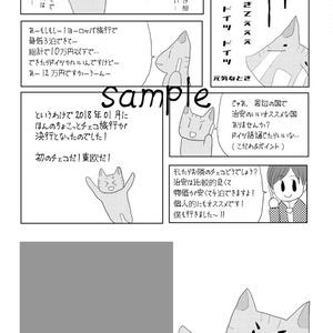 【7/4新刊】ほんのちょこっとチェコ旅行(下)