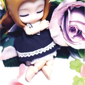 花中の少女は夢を見る