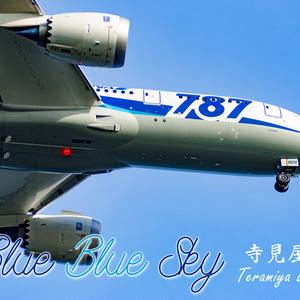 BlueBlueSky