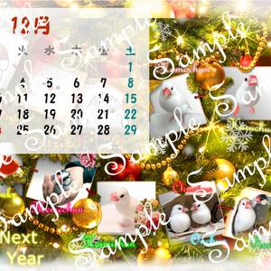 2018年 ちゅんすけカレンダー12月(*•ө•*)