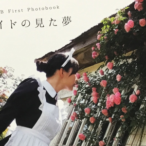 ロングメイド写真集「メイドの見た夢」