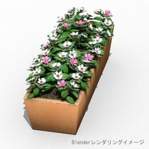 花 四角形鉢