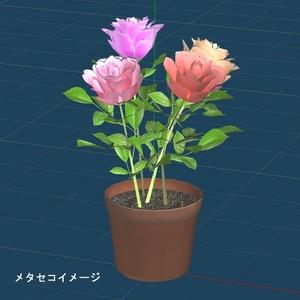 花 植木鉢
