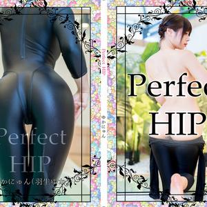 紙写真集【Perfect HIP】