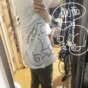 セナレオンTシャツ ホワイト