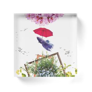 sakana umbrellaアクリルブロック