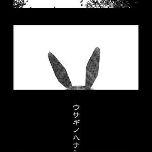 ウサギノハナシ