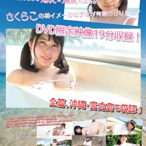 【DVD】青春旅行 Clean Ver.(サイン付き)