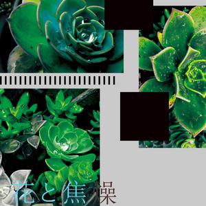 花と焦燥 総集編
