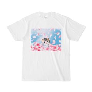 子猫と桜吹雪