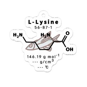 アミノ酸(リジン) アクリルキーホルダー