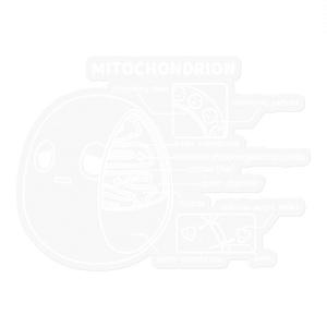 ミトコンドリア(透明) ステッカー