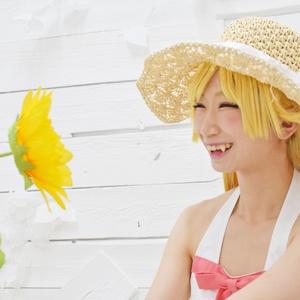 忍野忍の夏休み