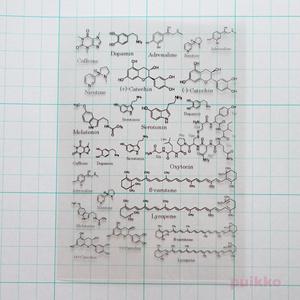 化学構造式 レジン封入用フィルム