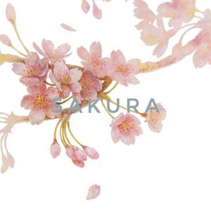 桜/ランチトートバッグ ★購入特典付き