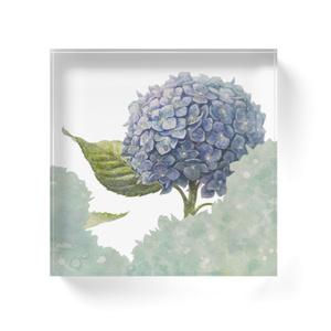 青時雨に輝く紫陽花アクリルブロック