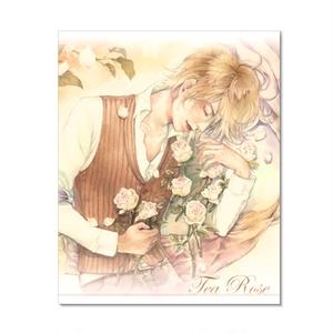 Tea Rose【画集】