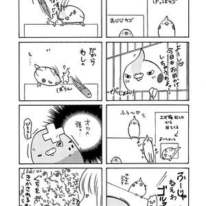 実録!くちばし兄妹総集編