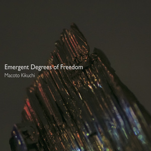 Emergent Degrees of Freedom / 菊池誠