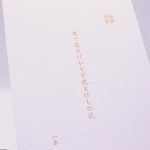 季節の俳句「初夏」  カードset