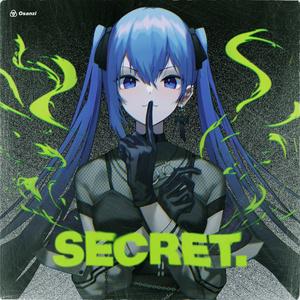 SECRET. 【実物CD版】