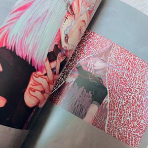 ( 2016-2017作品集 )sashimi mania 2