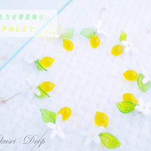 new✨もちもちの果実飾り~瀬戸内レモン~