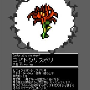 ジュウニ図鑑 植物(花)
