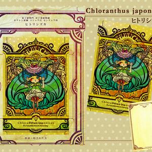 花言葉のポストカード