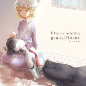 Platycodon grandiflorus