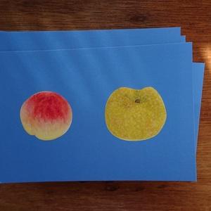 『桃と梨』