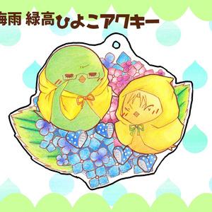 紫陽花アクキー