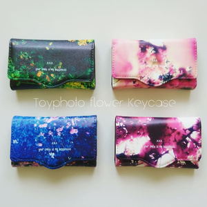 Toyphoto design Keycase collection.