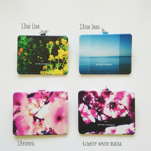 Toyphoto coroful passcase collection.