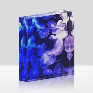 アクリルブロック jellyfish