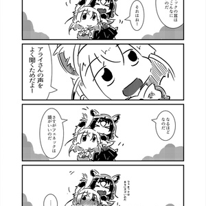 アライグマとフェネック
