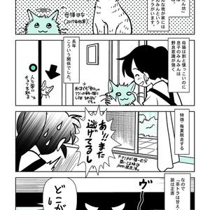 【電子版】茶トラ甘えん坊説を検証してみた話【実録】