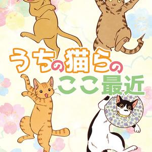 【電子版】うちの猫らのここ最近【実録】