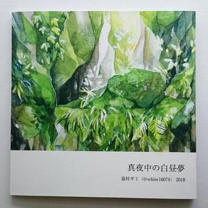 【匿名配送】画集「真夜中の白昼夢」
