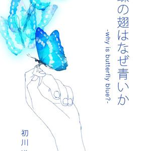 蝶の翅はなぜ青いか