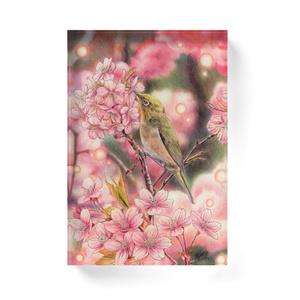 [アクリルブロック] 春の光につつまれて